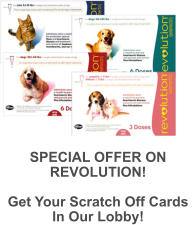 SPECIAL OFFER ON REVOLUTION!  Get Your Scratch Off Cards  In Our Lobby!